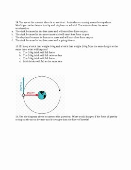 Friction and Gravity Worksheet Answers Unique forces Friction Gravity Inertia & Newton S Laws