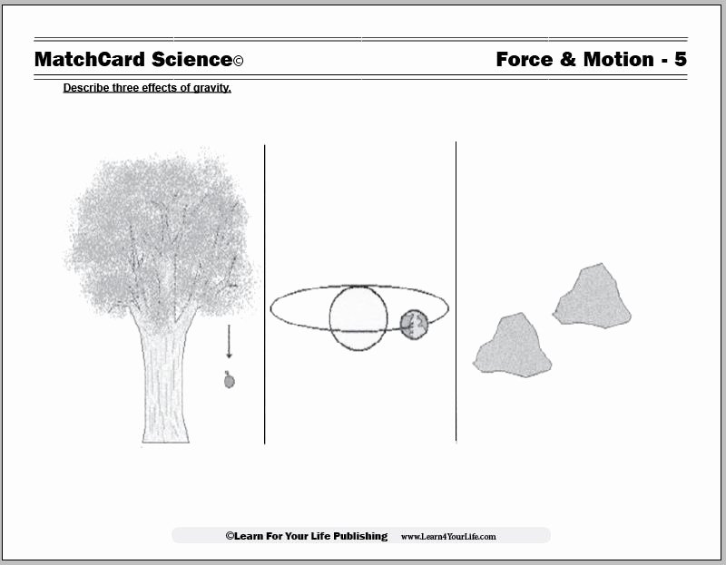 Friction and Gravity Worksheet Lovely force and Motion Worksheets