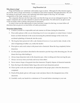 Frog Dissection Pre Lab Worksheet Elegant Frog Dissection Answer Sheet