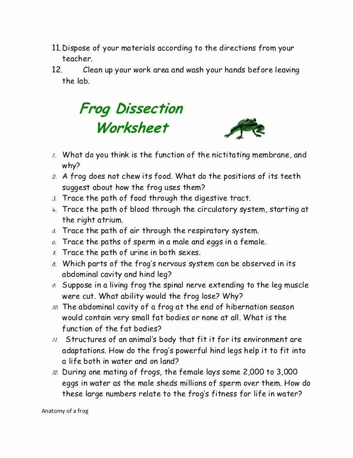 Frog Dissection Pre Lab Worksheet Elegant Frog Dissection Worksheet