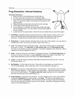 Frog Dissection Pre Lab Worksheet Unique Student Guide to the Frog Dissection