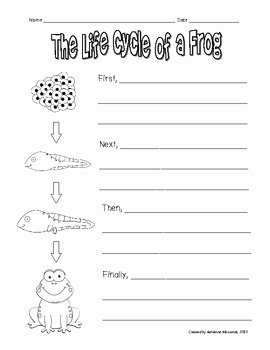 Frog Life Cycle Worksheet Elegant Freebie Frog Life Cycle Writing Prompt by Adrienne