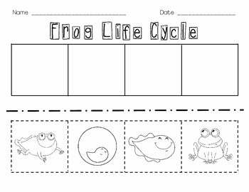 Frog Life Cycle Worksheet Luxury Frog Life Cycle Cut and Paste by Erin Ward