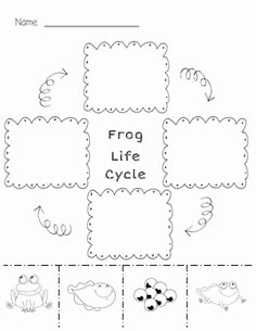 Frogs Life Cycle Worksheet Awesome Life Cycle Frog School Lessons Activities