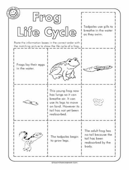 Frogs Life Cycle Worksheet Awesome Teach This Worksheets Create and Customise Your Own