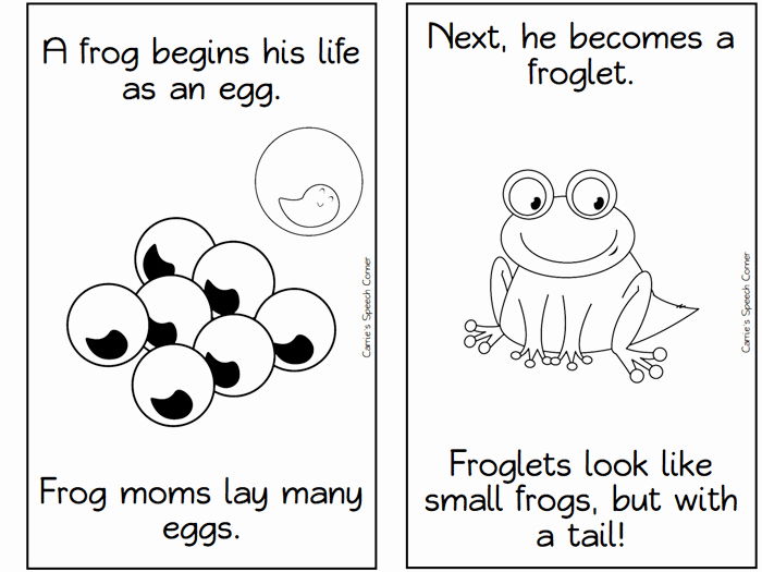 Frogs Life Cycle Worksheet Fresh 13 Frog Life Cycle Resources and Printables Teach Junkie
