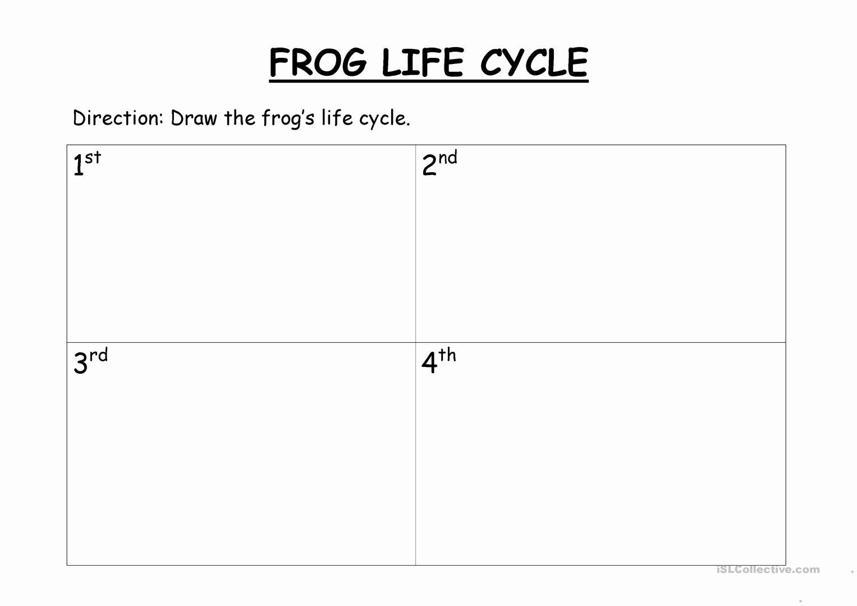 Frogs Life Cycle Worksheet New Frog S Life Cycle Worksheet Free Esl Printable