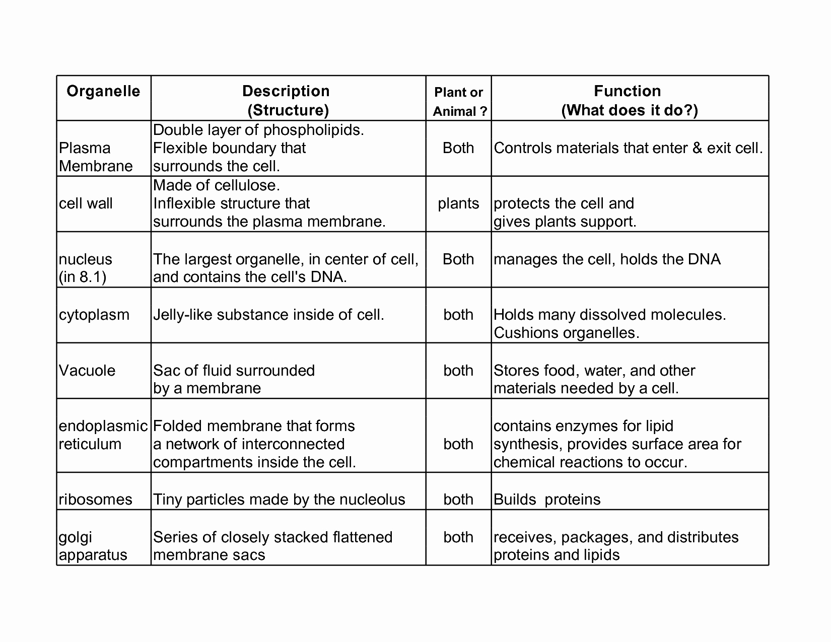 Function Of the organelles Worksheet Elegant Cellular organelle Structure and Function Essay Sample
