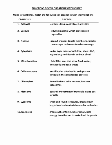Function Of the organelles Worksheet Lovely Cell organelles Worksheet with Answers by Kunletosin246
