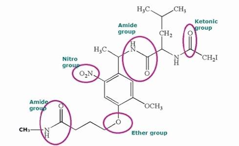 Functional Group Practice Worksheet Beautiful Functional Groups In organic Chemistry Nomenclature