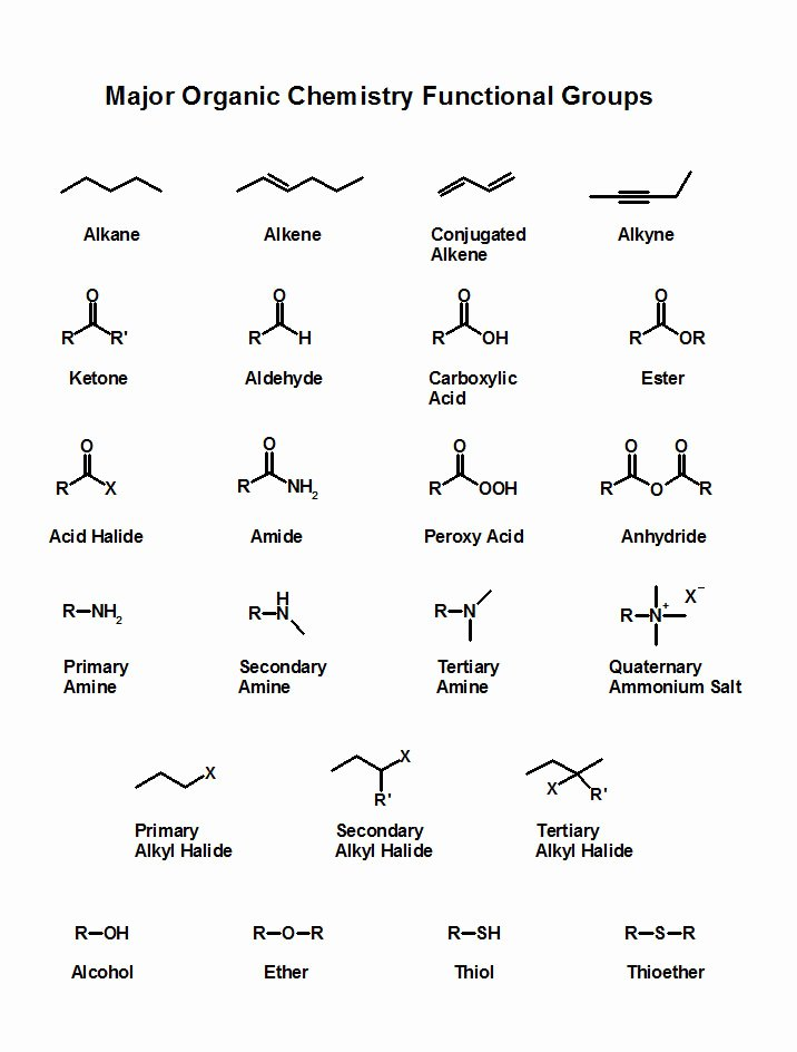 Functional Group Practice Worksheet Elegant How Can I Memorize Functional Groups