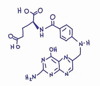 Functional Group Practice Worksheet Fresh organic Chemistry Functional Groups Practice Quiz