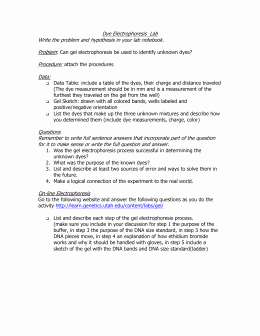 Gel Electrophoresis Worksheet Answers Beautiful Gel Electrophoresis Virtual Lab Worksheet Answer Key