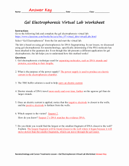 Gel Electrophoresis Worksheet Answers Inspirational Wow Biolab Gel Electrophoresis