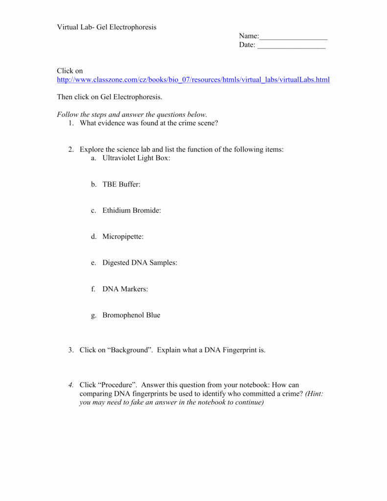 Gel Electrophoresis Worksheet Answers Luxury Worksheet Gel Electrophoresis Worksheet Grass Fedjp