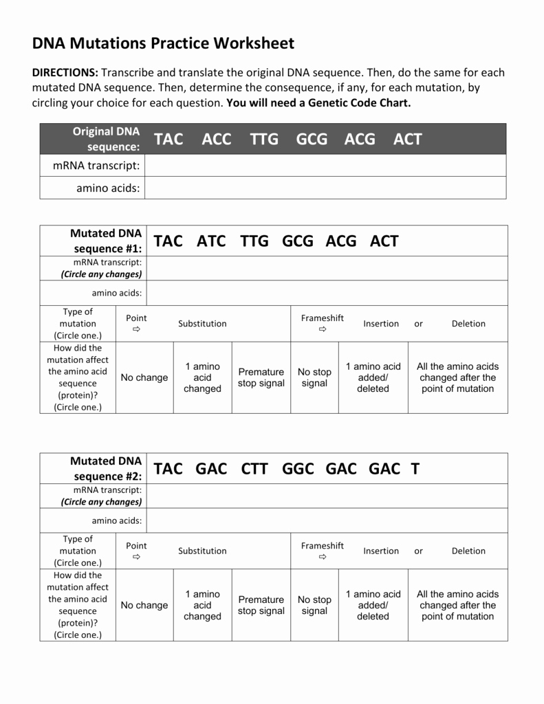 Gene and Chromosome Mutation Worksheet Awesome Dna Mutations Practice Worksheets Answer Key