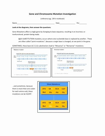 Gene and Chromosome Mutation Worksheet New Genetic Mutation Worksheet Point Pleasant Beach