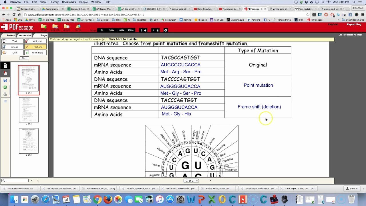 Genetic Mutations Worksheet Answer Key Lovely Answers Mutations Worksheet