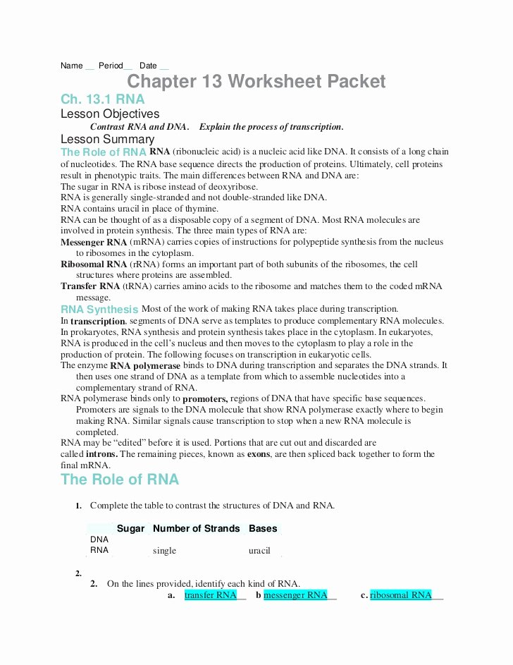 Genetic Mutations Worksheet Answer Key New Chapter13 Worksheets