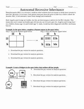 Genetics Pedigree Worksheet Answers Awesome Genetics Autosomal Recessi by Beverly Biology