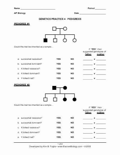 Genetics Pedigree Worksheet Answers Unique Genetics Pedigree Worksheet