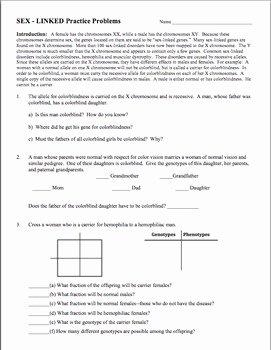 Genetics Practice Problem Worksheet Luxury Genetics Practice Problem Worksheet Linked Genes