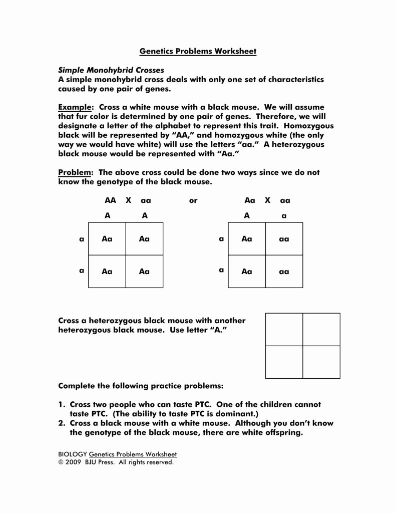 Genetics Practice Problem Worksheet Unique Genetics Problems Worksheet Simple Monohybrid Crosses A Simple