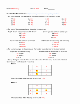 Genetics Practice Problems Simple Worksheet Beautiful Genetics Practice Problems Simple Worksheet He Ho Aa