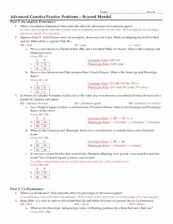 Genetics Practice Problems Simple Worksheet Lovely Genetics Practice Problems Simple Worksheet Answers the