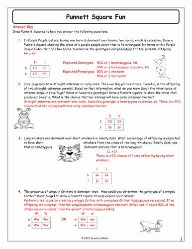 Genetics Practice Problems Worksheet Answers Luxury Genetics Practice Problems Worksheet