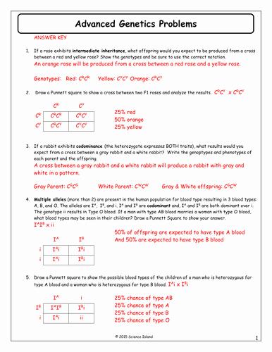 Genetics Practice Problems Worksheet Answers Unique 11 Advanced Genetics Problems Answer Keycx