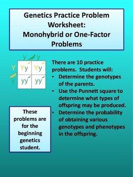 Genetics Practice Problems Worksheet Awesome Monohybrid Cross Worksheet by Amy Brown Science