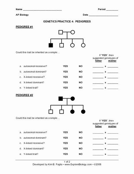 Genetics Practice Problems Worksheet Beautiful Genetics Practice 4 Pedigrees Worksheet for 9th 12th