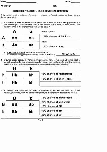 Genetics Practice Problems Worksheet Beautiful Genetics Practice Problems Worksheet Key Ppt