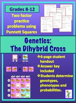 Genetics Practice Problems Worksheet Inspirational Genetics Dihybrid Two Factor Practice Problem Worksheet