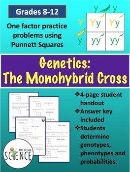 Genetics Practice Problems Worksheet New Monohybrid Cross Punnett Square Worksheet by Amy Brown