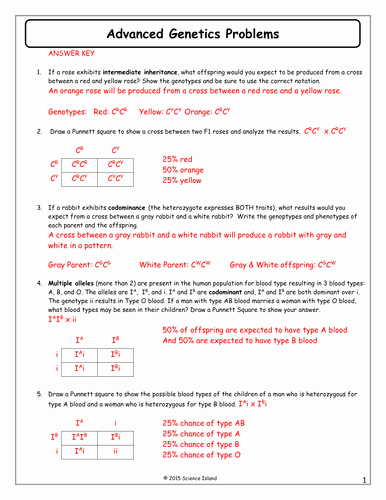 Genetics Problems Worksheet Answer Key Awesome 11 Advanced Genetics Problems Answer Keycx