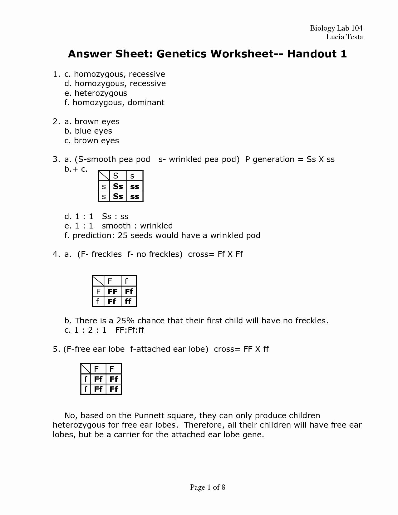 Genetics Problems Worksheet Answer Key Unique 19 Best Of the Genetic Code Worksheet Answers