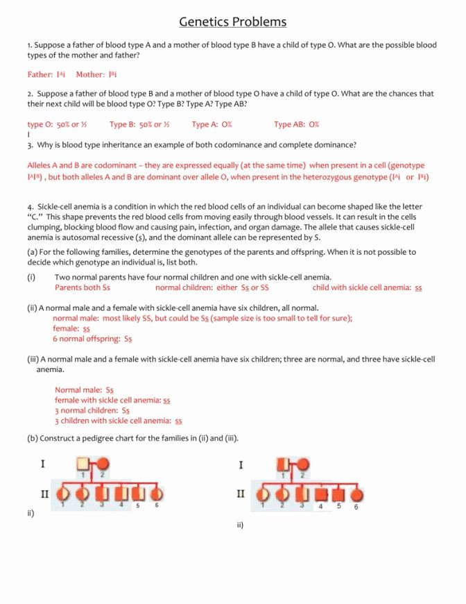 Genetics Problems Worksheet Answers Awesome Blood Type and Inheritance Worksheet Answer Key