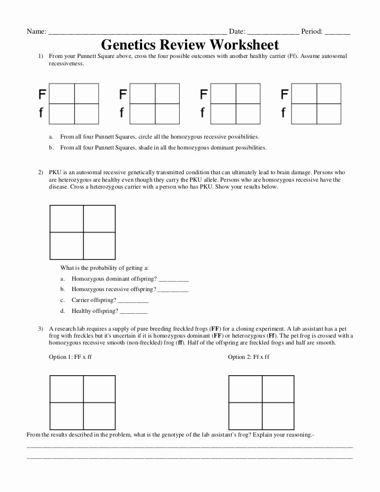 50 Genetics Worksheet Answer Key | Chessmuseum Template ...
