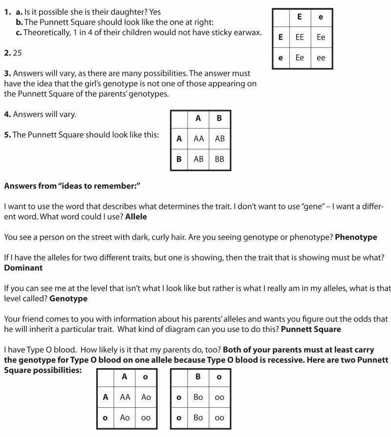 Genetics Worksheet Answer Key Best Of Peas In A Pod Genetics Mensa for Kids
