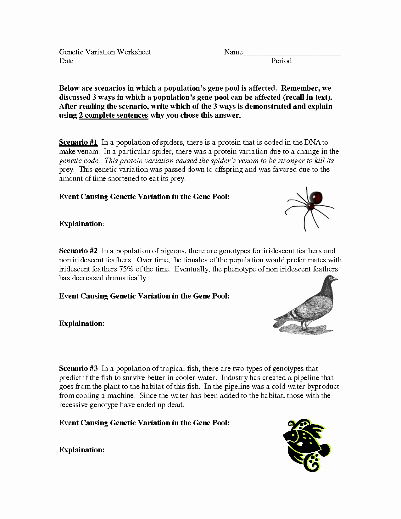 Genetics Worksheet Answers Key Beautiful 12 Best Of Genetic Variation Meiosis Worksheet