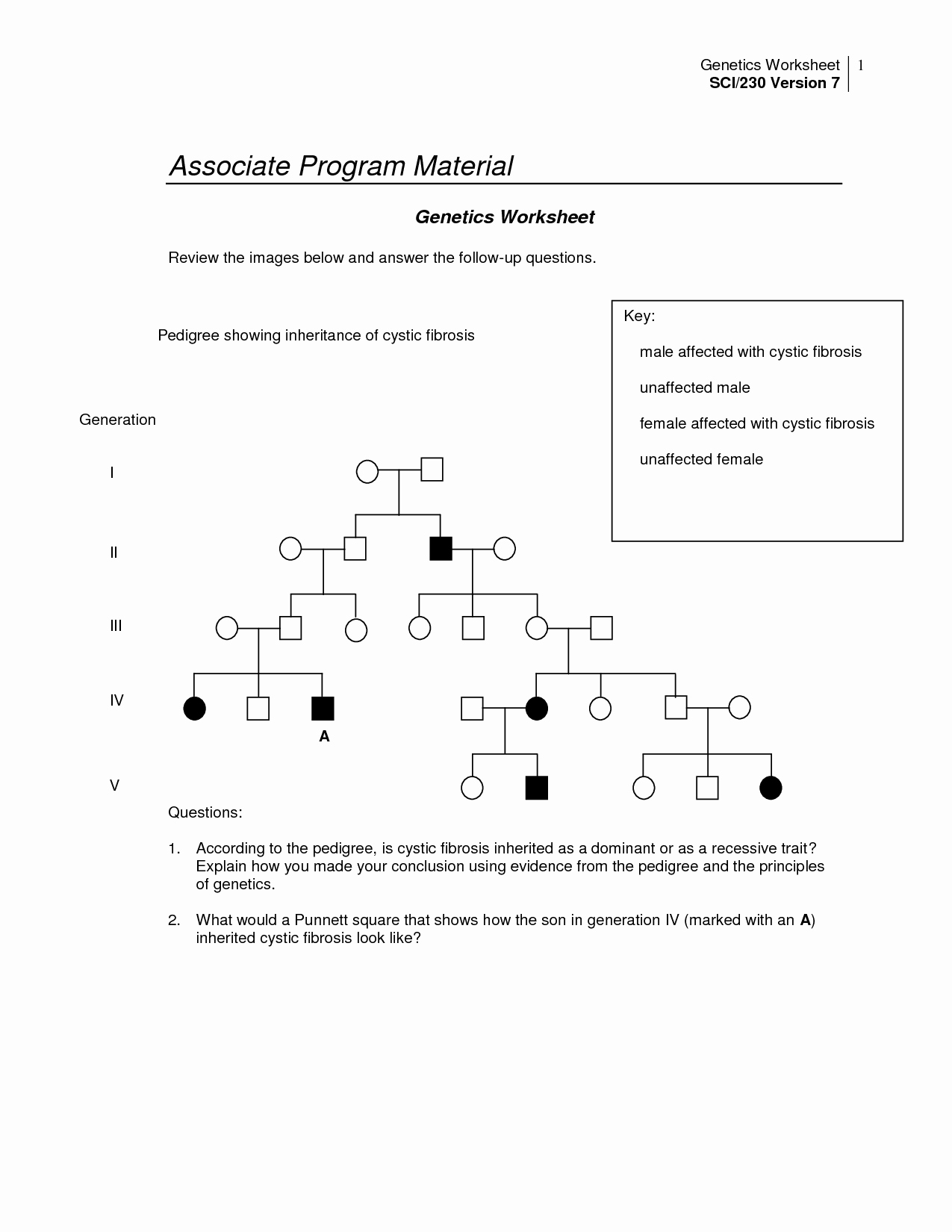 Genetics Worksheet Answers Key Best Of 14 Best Of Pedigree Worksheet with Answer Key