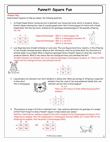 Genetics Worksheet Answers Key Lovely Genetics Practice Problems Worksheet
