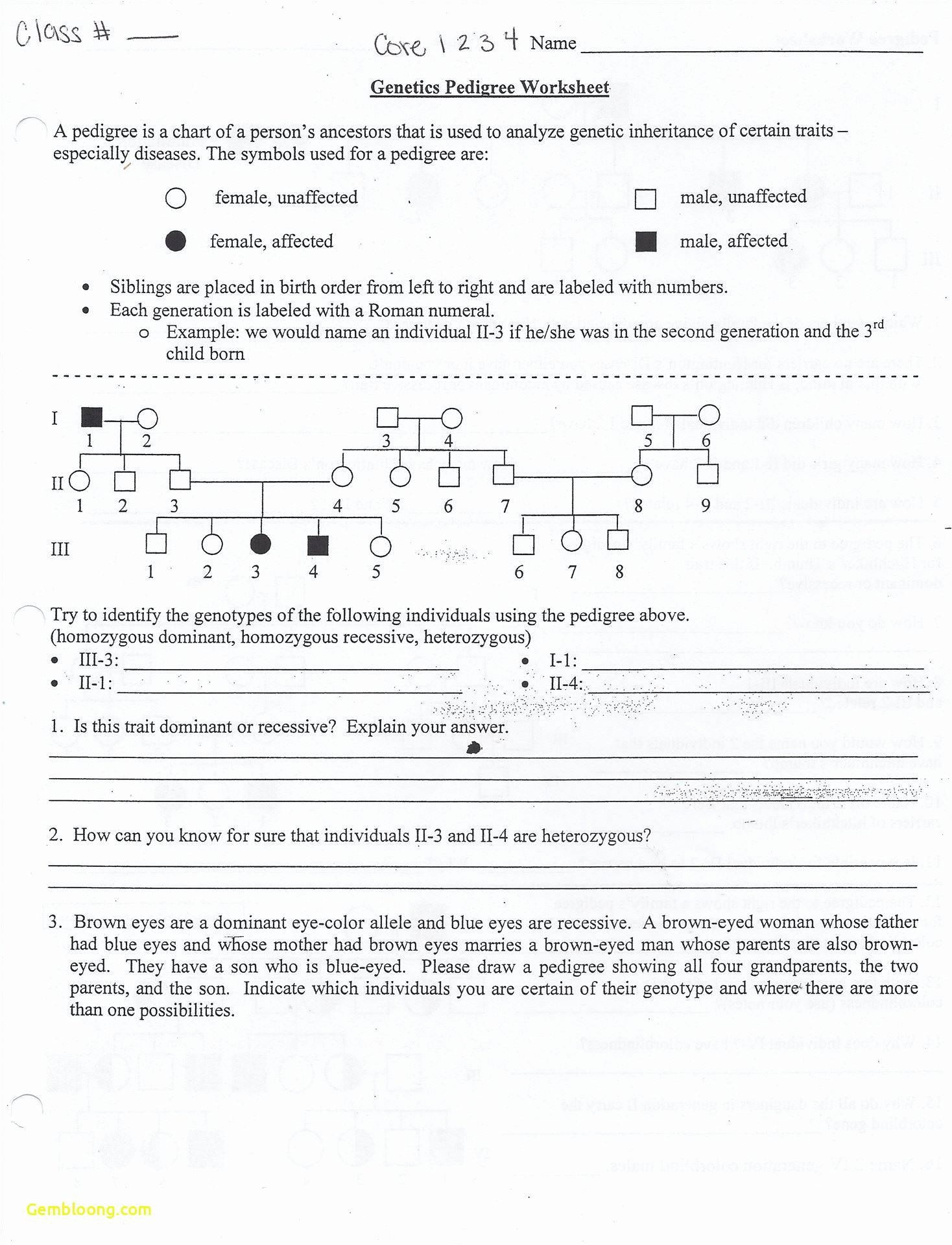 Genetics Worksheet Answers Key Luxury Mendelian Genetics Worksheet Answer Key