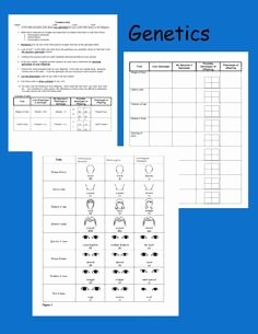 Genetics Worksheet Middle School Beautiful Genetics Info and Punnett Square Activity for Kids