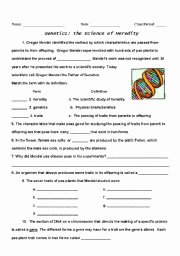 Genetics Worksheet Middle School Unique English Worksheets Genetics Heredity