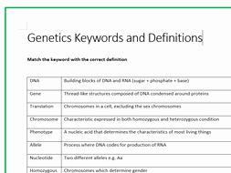 Genetics X Linked Genes Worksheet Awesome Genetics Keywords and Definitions by Mrskirk72