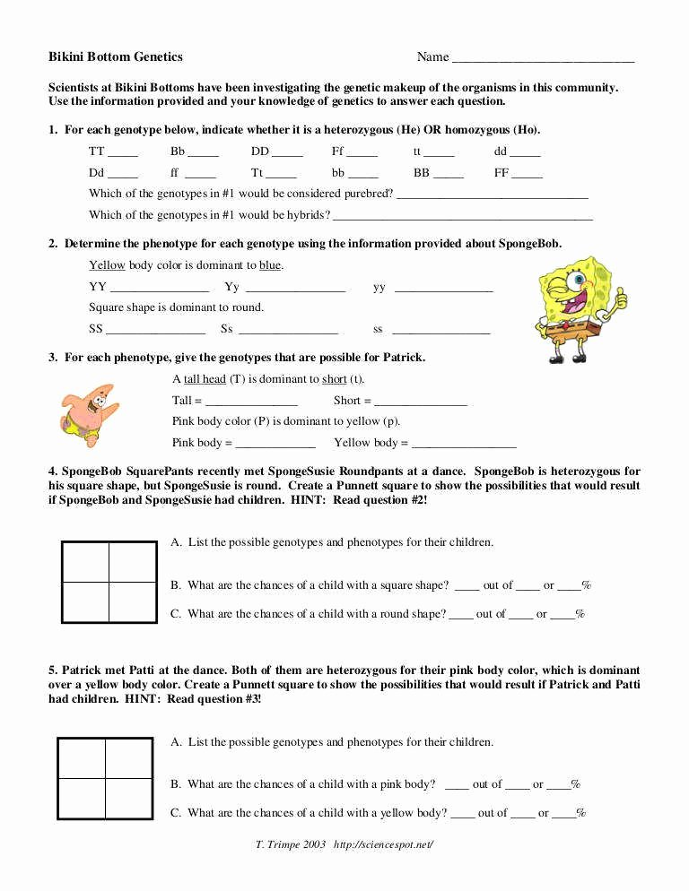 Genetics X Linked Genes Worksheet Best Of Genetics Worksheet