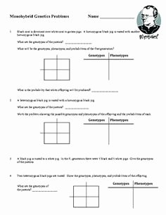 Genetics X Linked Genes Worksheet Elegant Genetics Practice Problem Worksheet Linked Genes